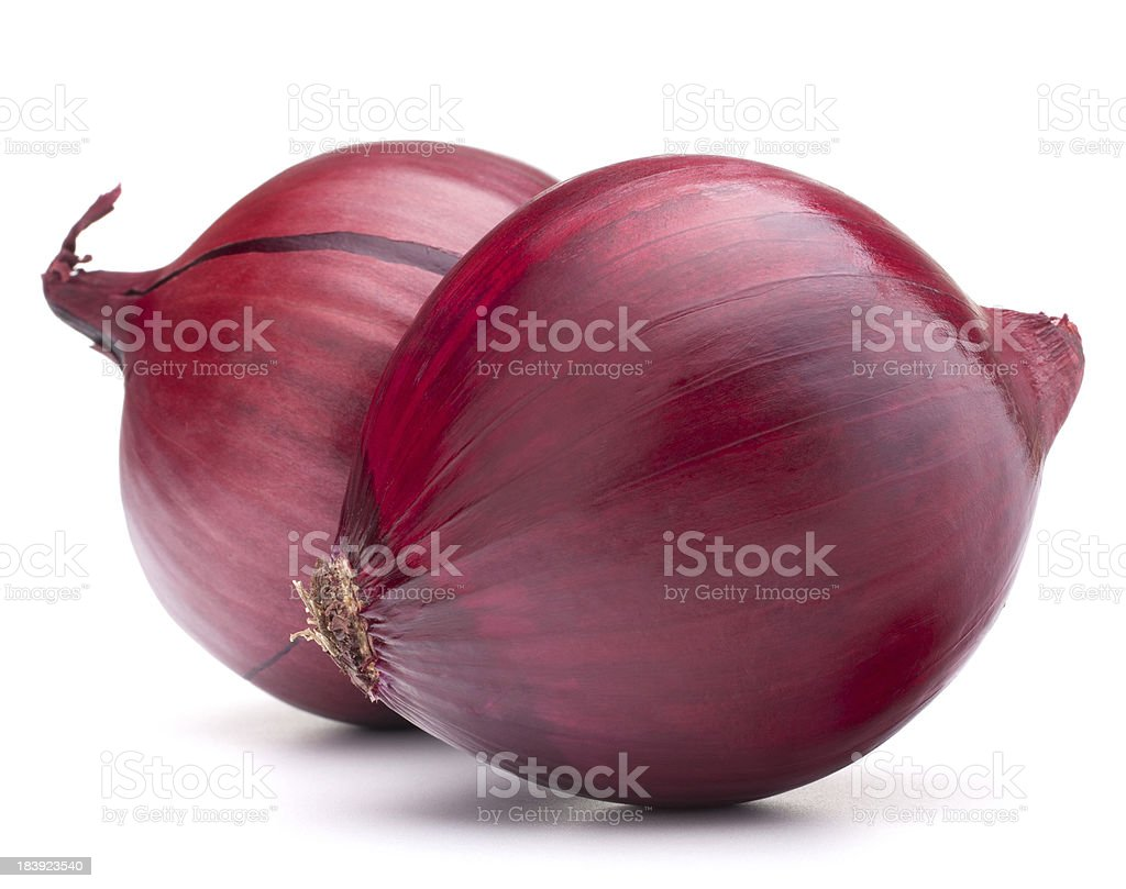 Two whole red onion bulbs on a white background stock photo