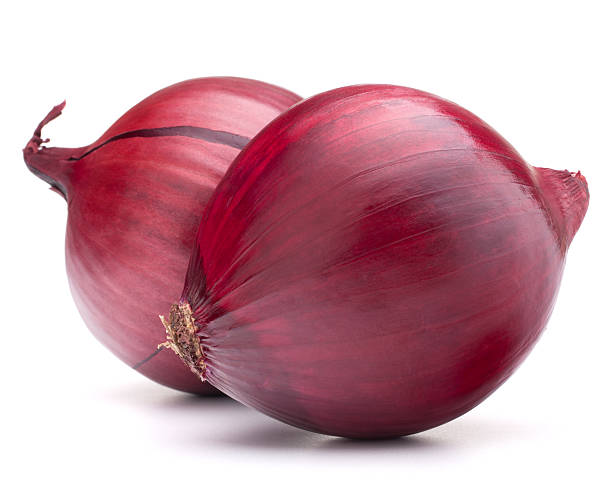 Two whole red onion bulbs on a white background red onion bulb  on white background red onions stock pictures, royalty-free photos & images