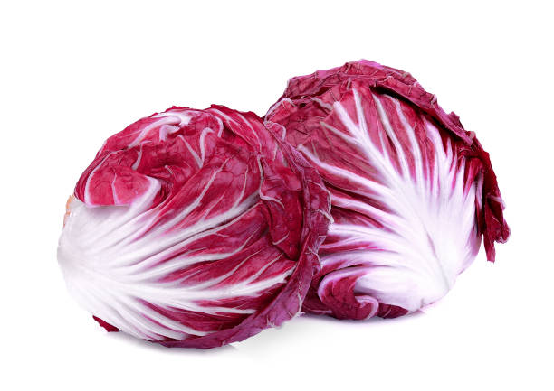 two whole red radicchio or red salad isolated on white background – zdjęcie
