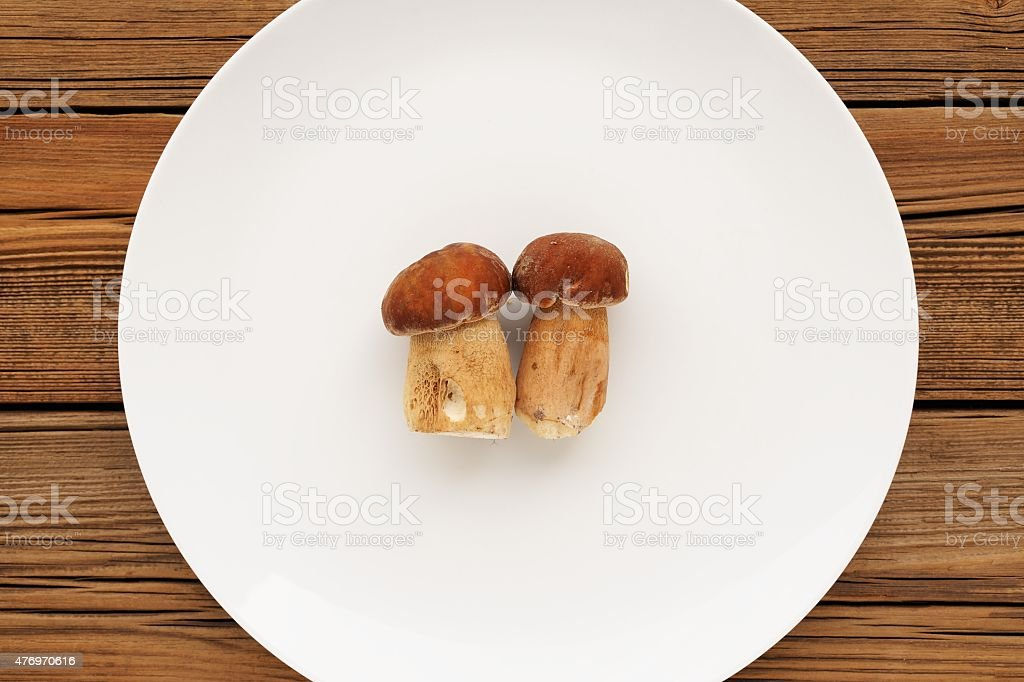 Two wild porcini mushrooms lying on large white plate copyspace stock photo