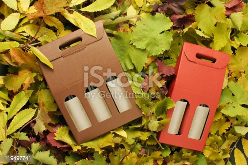 istock Two wine gift boxes 119497741