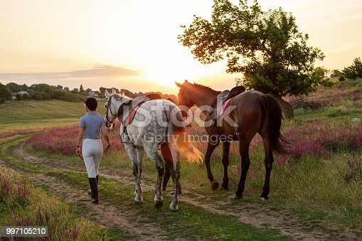 Two woman and two horses outdoor in summer happy sunset together nature. Taking care of animals, love and friendship concept.