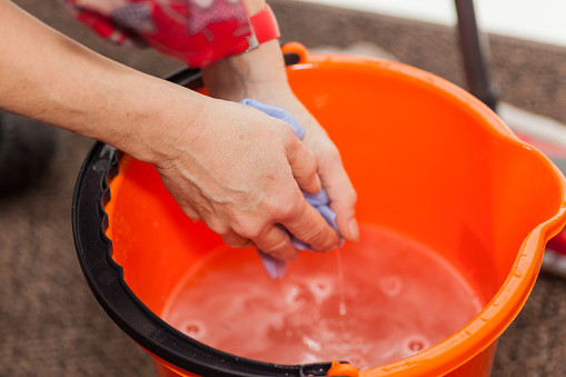 Two woman hands in a mop bucket