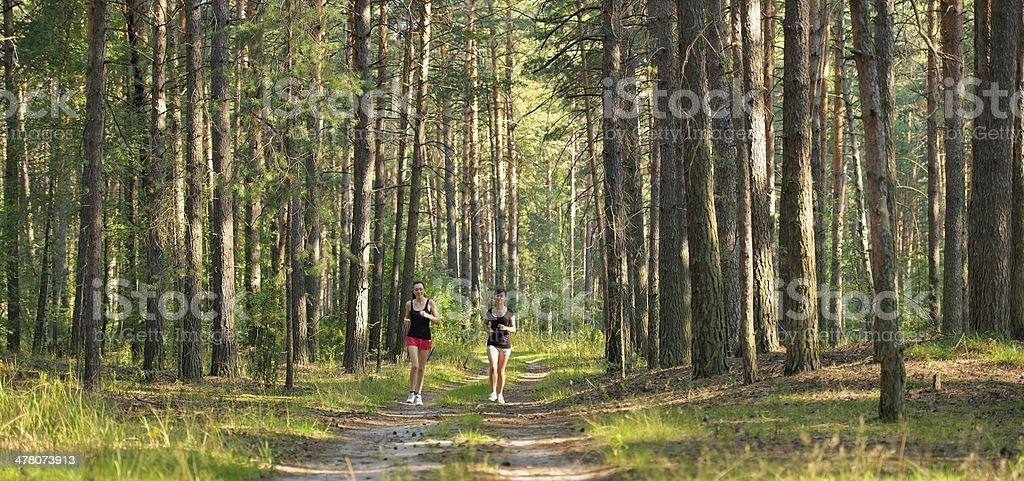 Две женщины, бег в лесу стоковое фото