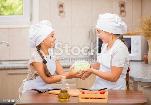 488109116istockphoto two women chefs 492515200