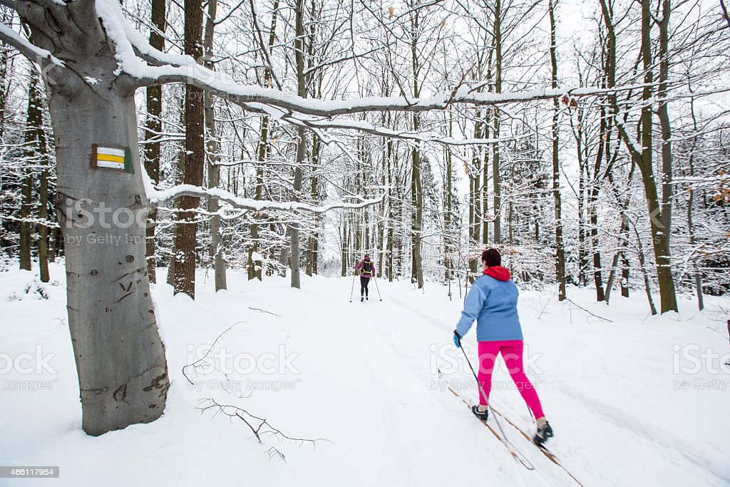 Two women cross-country skiing stock photo