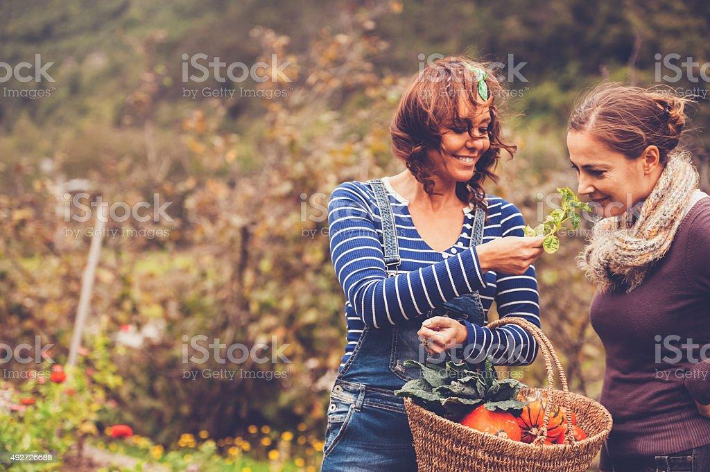 Two Women Enjoying in a Garden stock photo