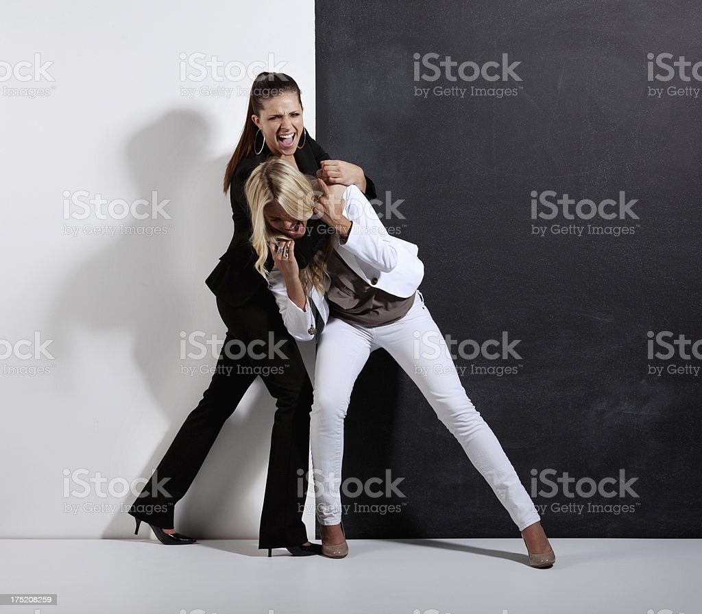 Two Women Fighting Stock Photo  More Pictures Of 20-29 -5353