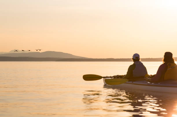 Two women in a sea kayak bird watching. People enjoying healthy lifestyles, nature and wildlife. Two women in a sea kayak bird watching. People enjoying healthy lifestyles, nature and wildlife. puget sound stock pictures, royalty-free photos & images