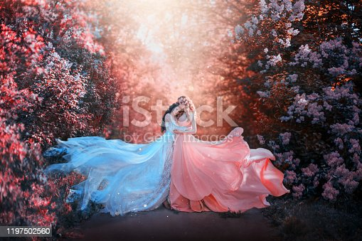 two women in long dresses hugging train flies wind. bright fabulous purple colors art retouching processing. Natural cosmetics scented spring flowers tenderness smell perfume. Blonde brunette hair