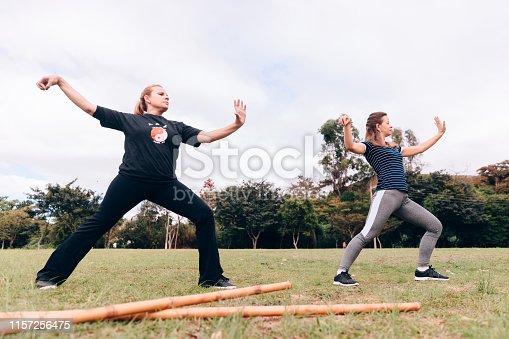 Two women training Tai Chi Chuan outdoors