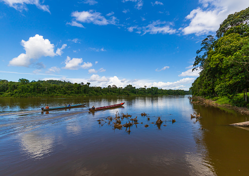 Beautiful Landscape Scenery In Suriname South America