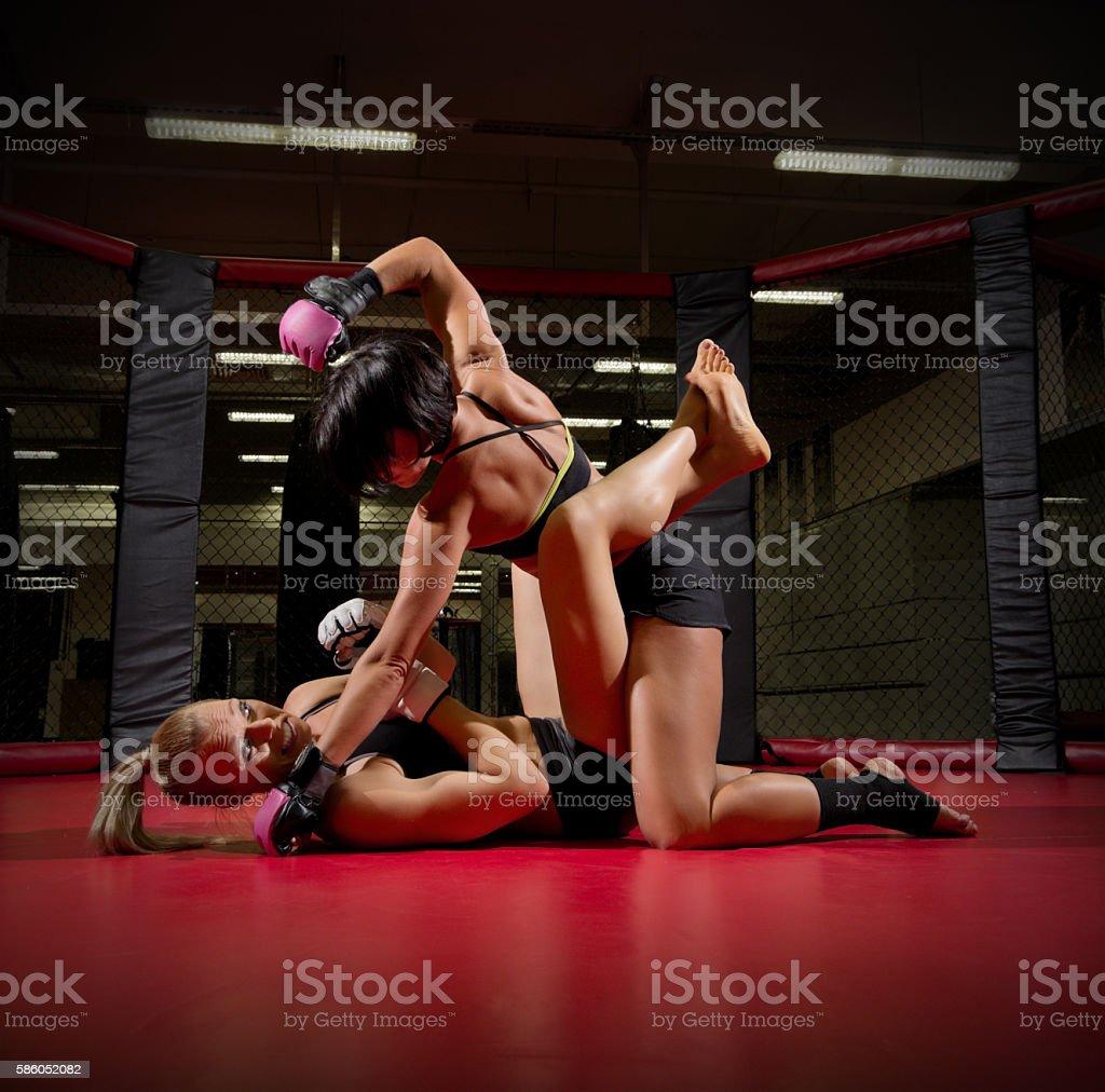 Two wrestler women stock photo