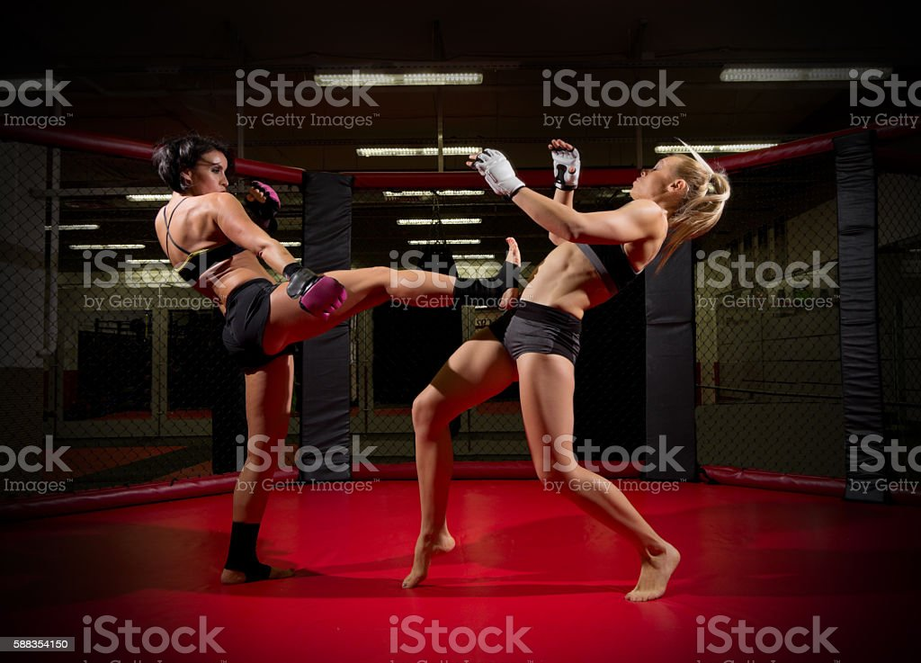 Two wrestler women stock photo