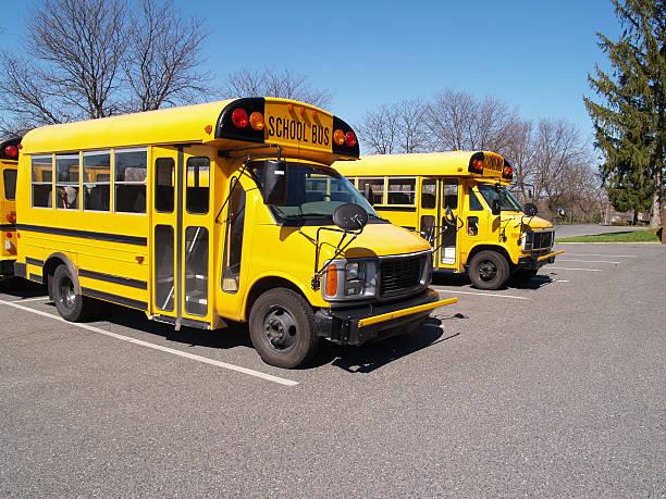 two yellow school buses stock photo