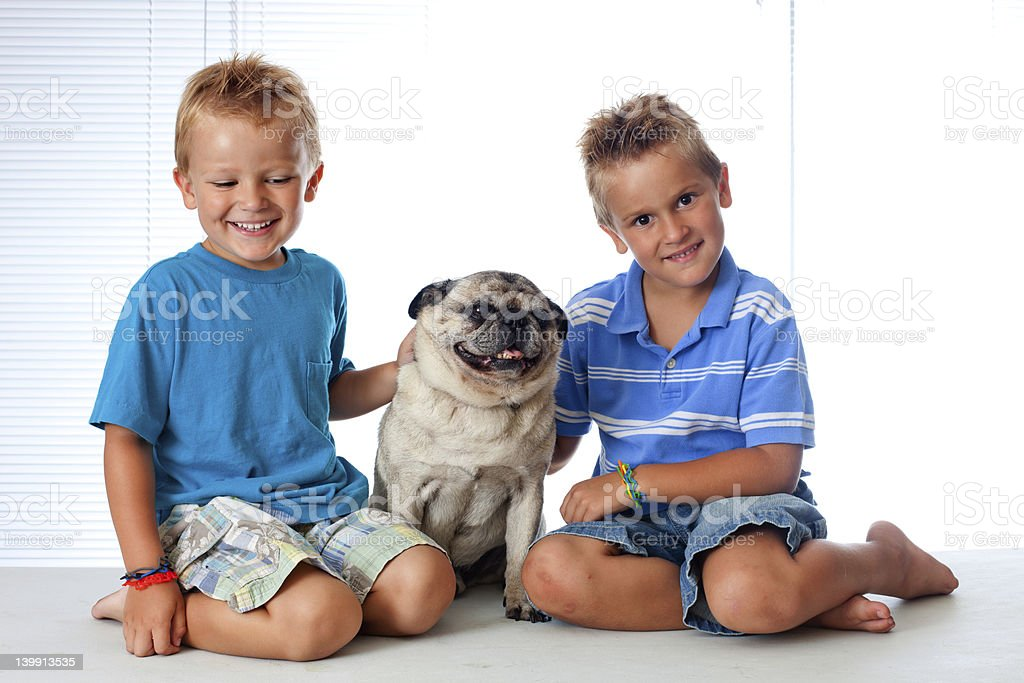 Two young boys and their dog royalty-free stock photo