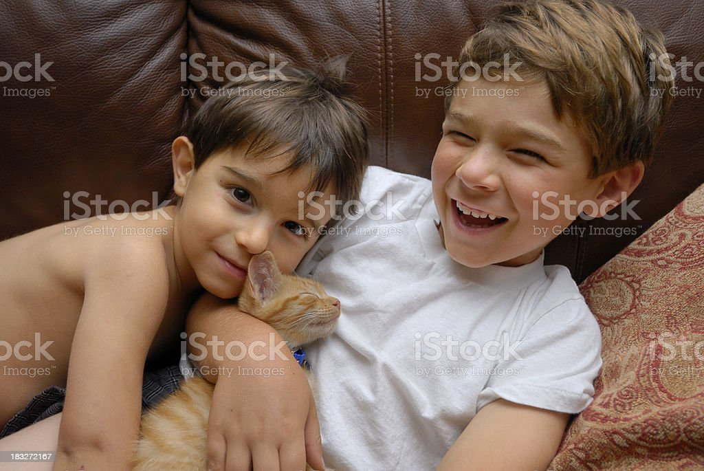 Two Young Boys Laughing With Kitten Stock Photo  More -8002