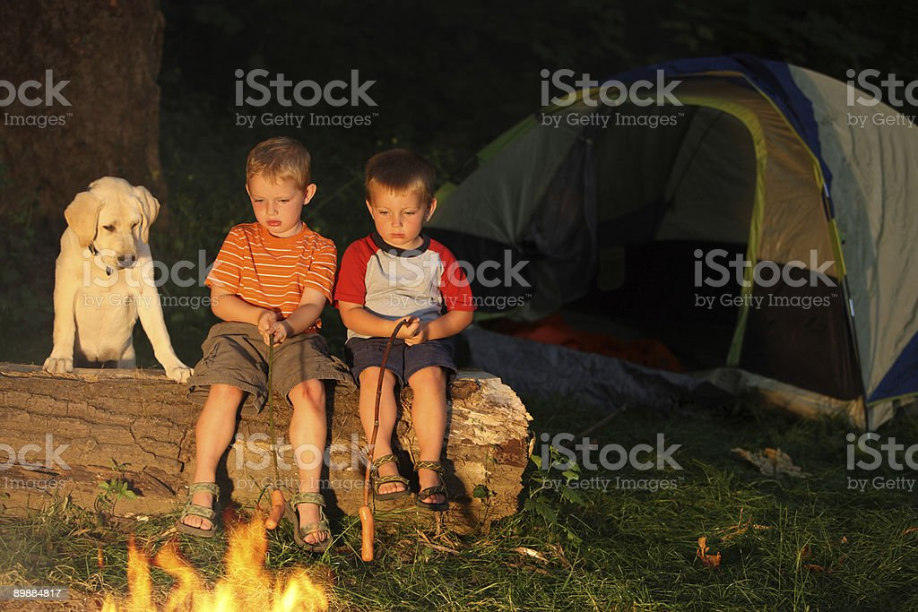Two young boys roasting hot dogs royalty-free stock photo