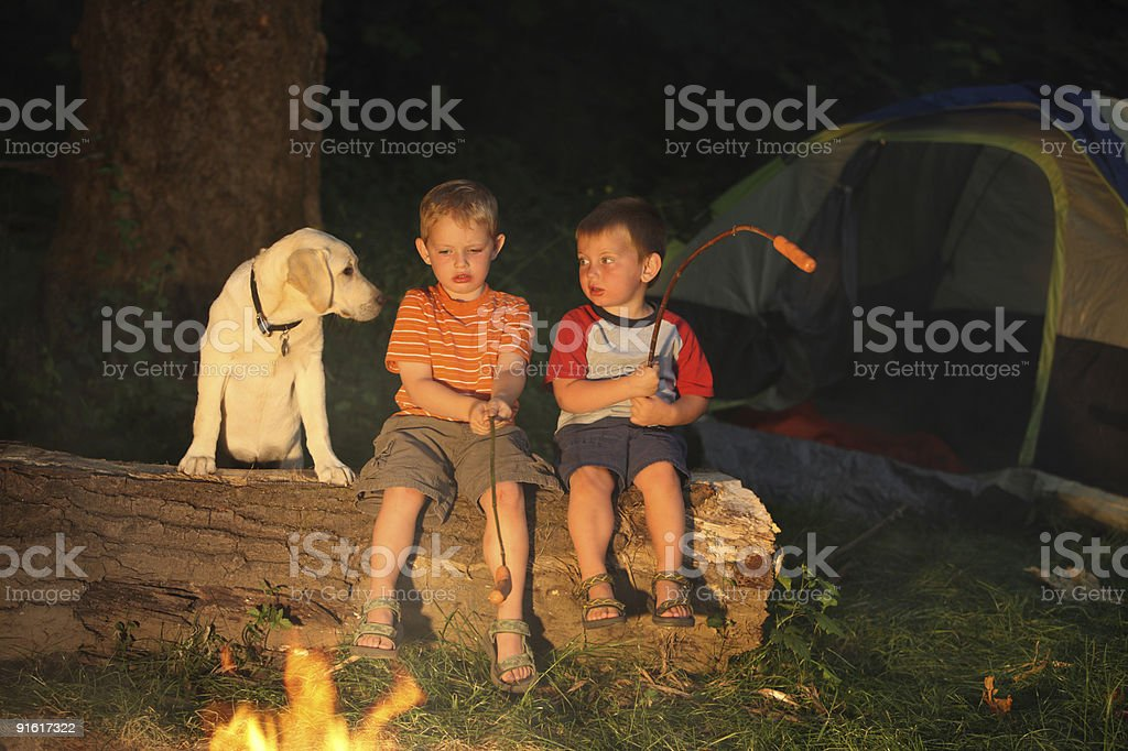 Two young boys with puppy roasting hot dogs royalty-free stock photo