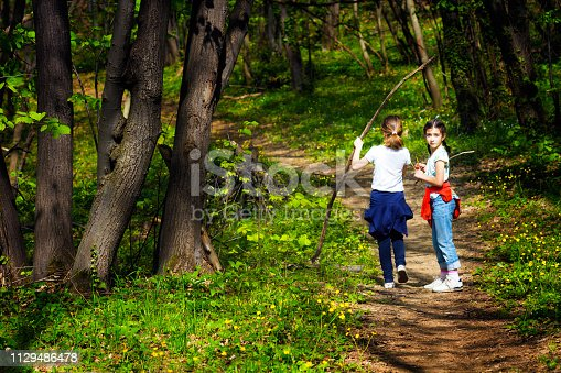 515278306 istock photo Two young children, girls walking through the woods 1129486478