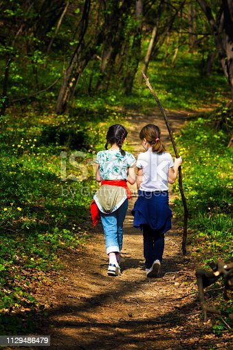 515278306 istock photo Two young children, girls walking through the woods 1129486479