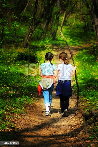 515278306 istock photo Two young children, girls walking through the woods 946748868