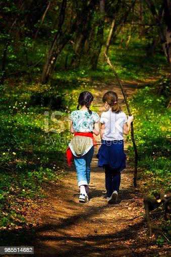 istock Two young children, girls walking through the woods 985514682