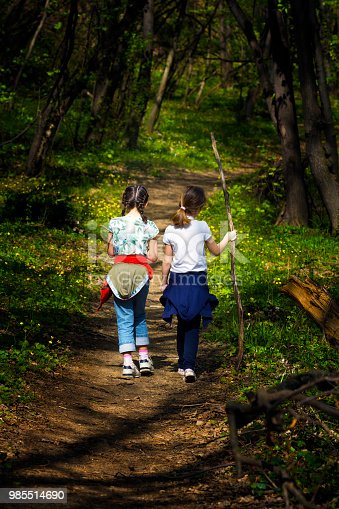 istock Two young children, girls walking through the woods 985514690