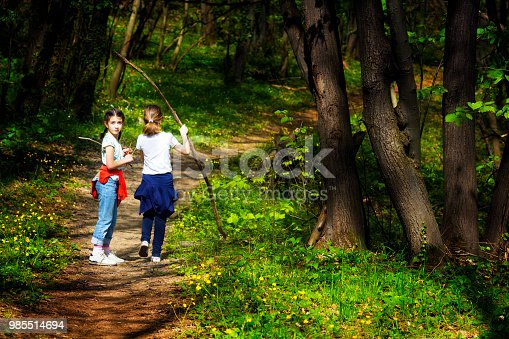 515278306 istock photo Two young children, girls walking through the woods 985514694