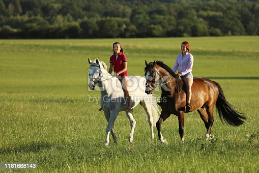 Couple of girls on horses walking through summer nature in the afternoon time