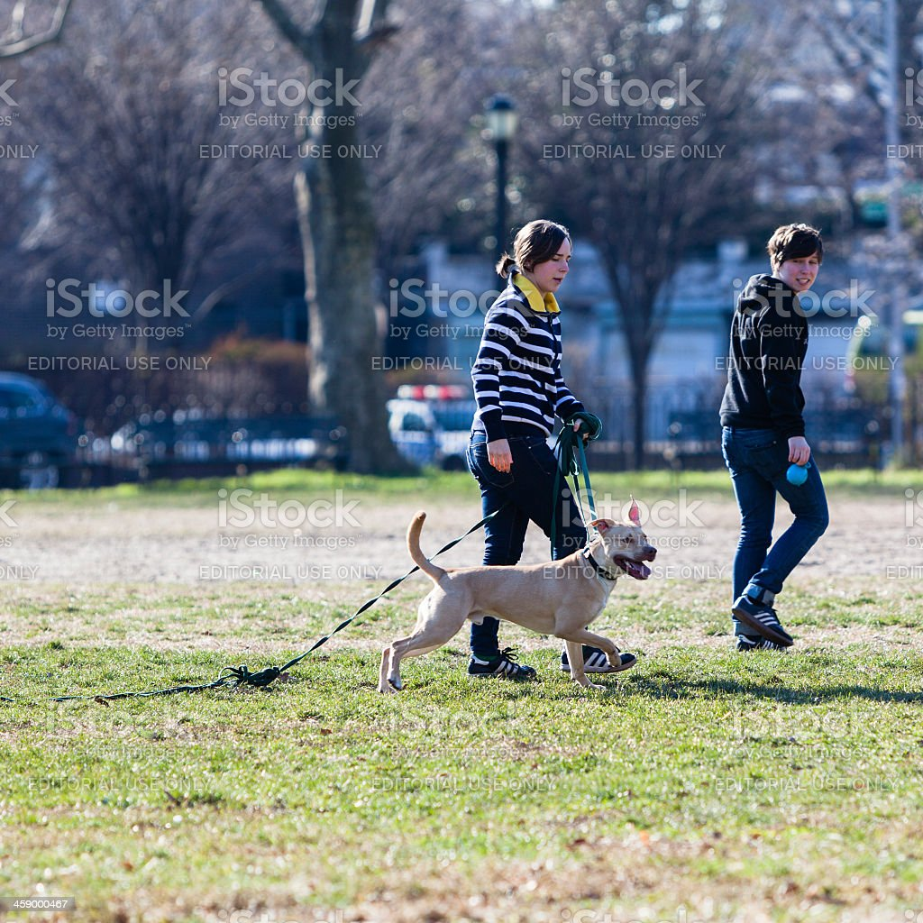 Two young girls play with a dog royalty-free stock photo