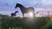 Two young horses graze on a picturesque green meadow near a beautiful pond on a beautiful spring morning lit by the Golden rays