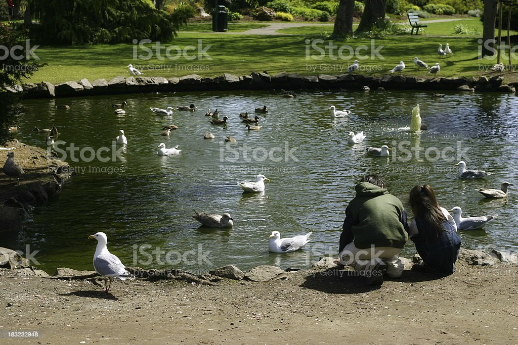 Two young kids feeding the birds at park. royalty-free stock photo