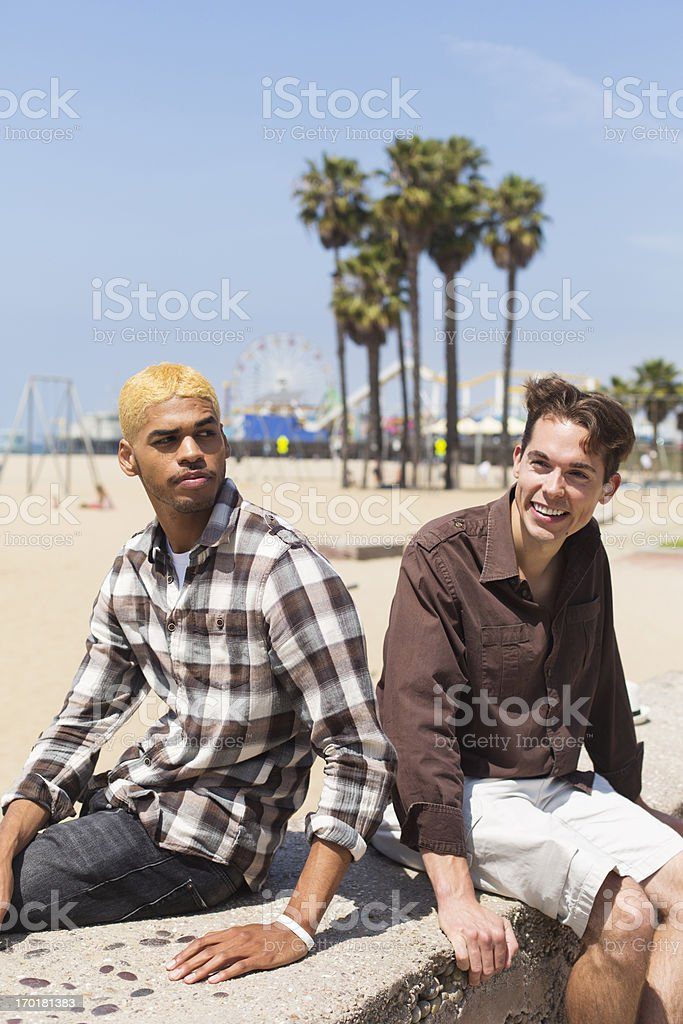 Two Young Men at the Beach royalty-free stock photo