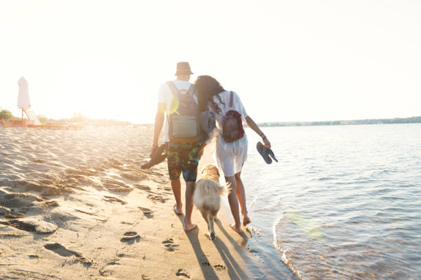 Two young people holding hands and walking on beach with a dog stock photo