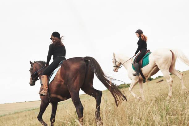 Zwei junge hübsche Mädchen reiten ein Pferd auf einem Feld. Sie lieben Tiere und Reiten – Foto