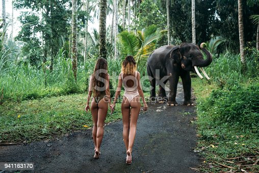 Two young womans turn back to camera with ass, elephant on background near forest. Beautiful girl model with fit body posing in white and green swimsuit. Concept of zoo, tropical photoshoot.