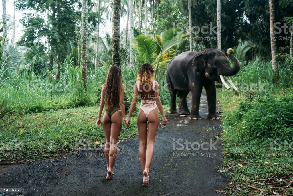 Les deux jeunes femmes rebrousser chemin à la caméra avec âne, éléphant sur fond près de forêt. Modèle de belle fille avec corps fit posant en maillot de bain blanc et vert. Concept de zoo, photoshoot tropical - Photo