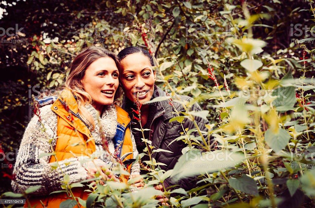 Zwei junge Frauen studieren Natur, die Gartenarbeit Lizenzfreies stock-foto