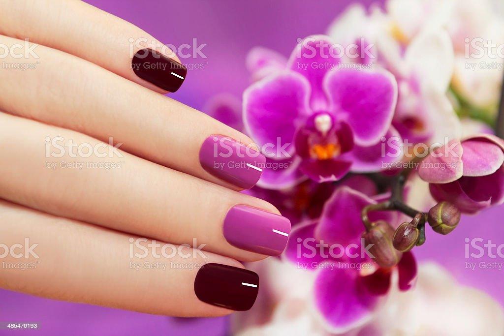 Two-tone fashion nails. stock photo