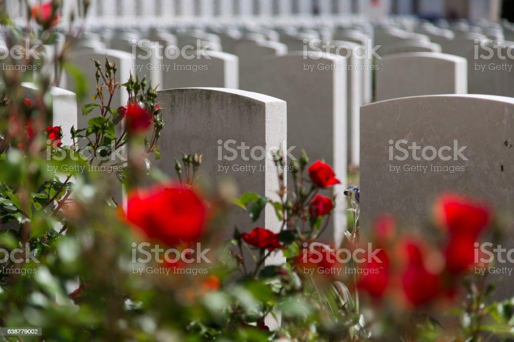 Tyne Cot Cemetery stock photo