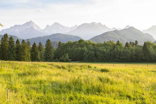 Typical alpine landscape