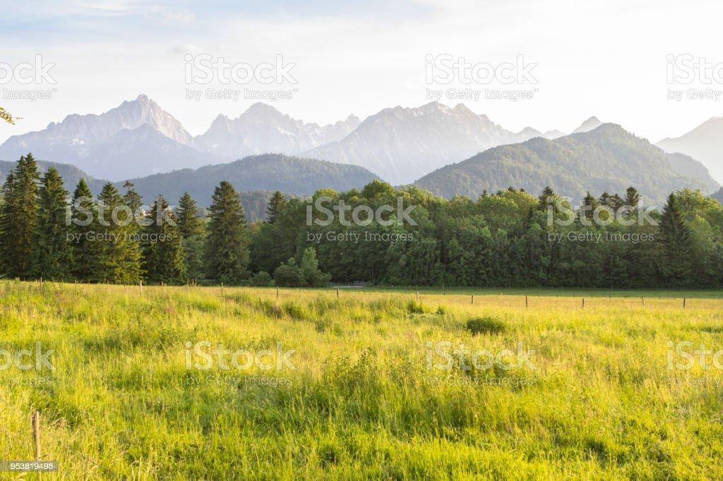 Typical alpine landscape stock photo
