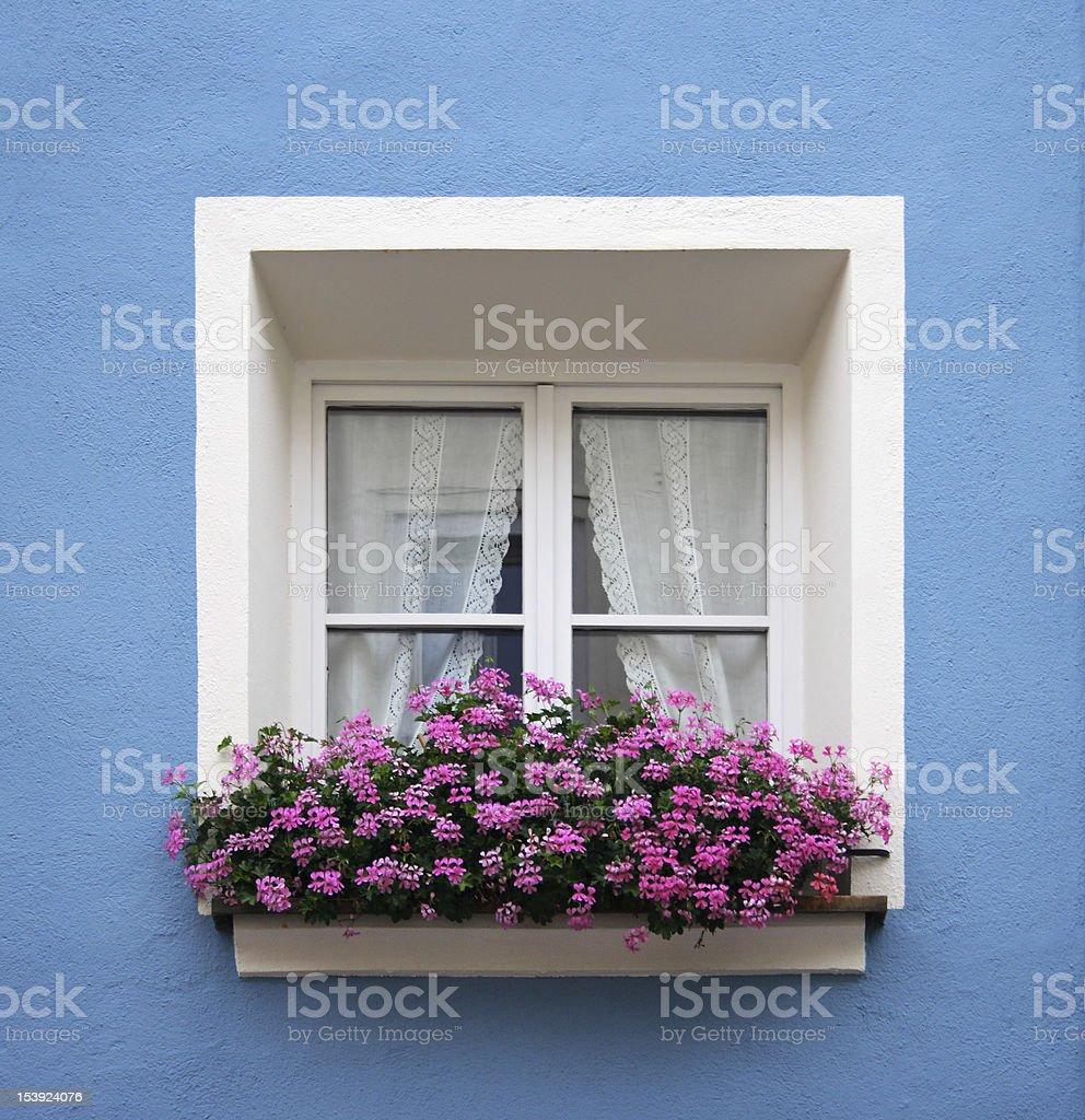Typical alpine window stock photo