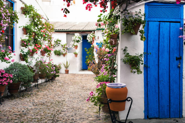 Typical andalusian courtyard in Cordoba, Andalusia Spain with blue doors and a lot of plants Typical andalusian courtyard in Cordoba, Andalusia Spain with blue doors and a lot of plants cordoba spain stock pictures, royalty-free photos & images