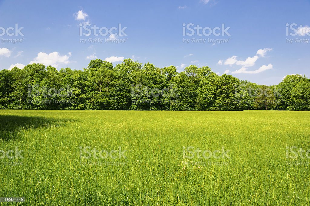 Typical Austrian Landscape royalty-free stock photo