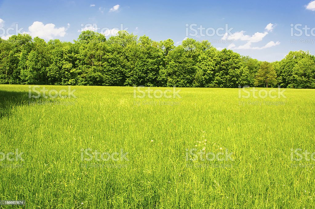 Typical Austrian Landscape stock photo