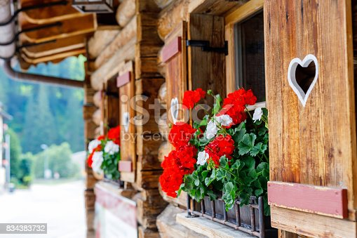 istock Typical bavarian or austrian wooden window with red geranium flowers on house in Austria or Germany 834383732