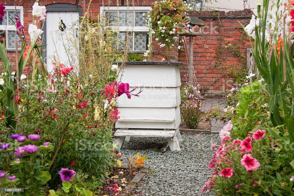 Typical british cottage garden. stock photo