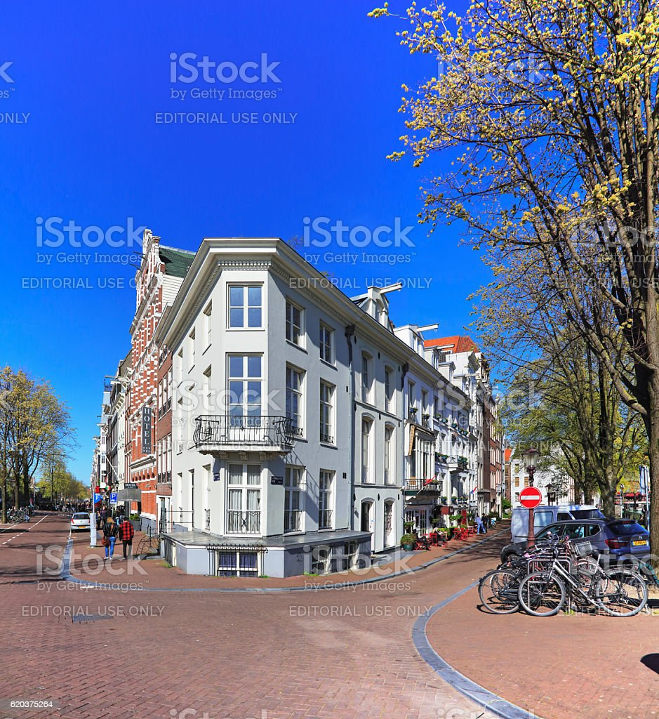 Typical Dutch Houses zbiór zdjęć royalty-free